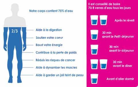 eau dans organisme